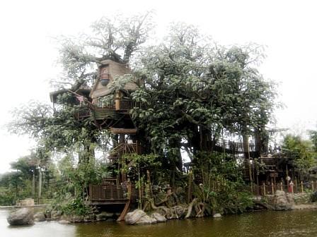 junglesafari.jpeg