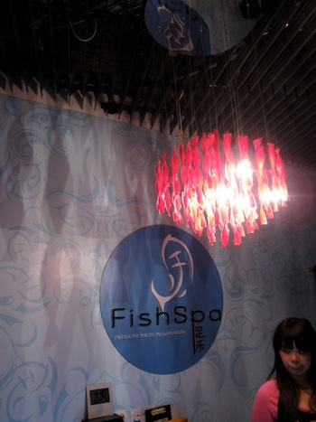 fish-spasss-03.jpg