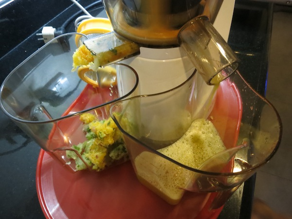 Hurom Slow Juicer Too Much Pulp : Bambee s Juicer Heart-2-Heart-Online.com