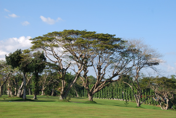sta-barbara-golf-club-iloilo-11.JPG