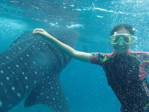 fun-shot-whaleshark.jpg