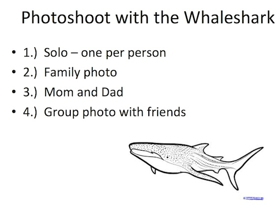 photoshoot-with-whaleshark-list.jpg