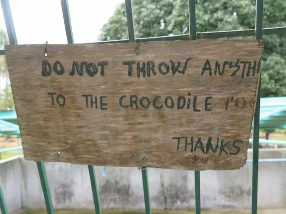 Ostrich and Crocodile Farm (17)