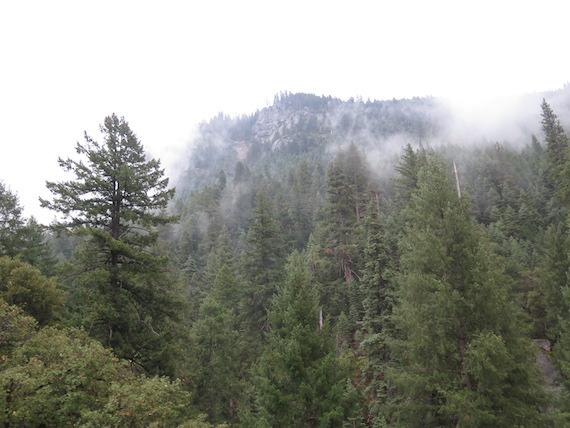 Road Trip to Lake Tahoe (10)