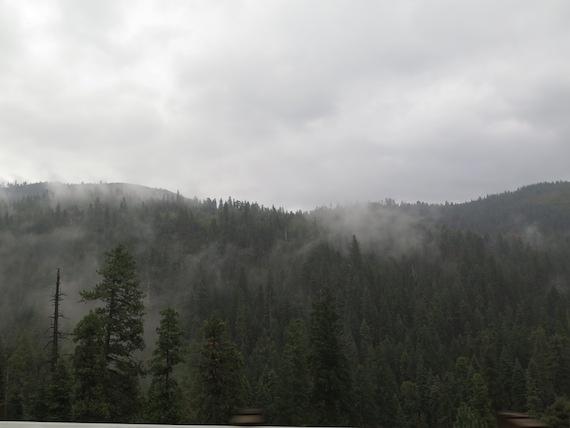Road Trip to Lake Tahoe (11)