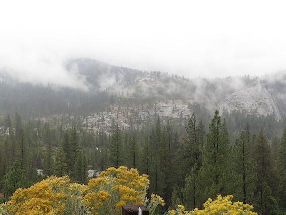 Road Trip to Lake Tahoe (12)