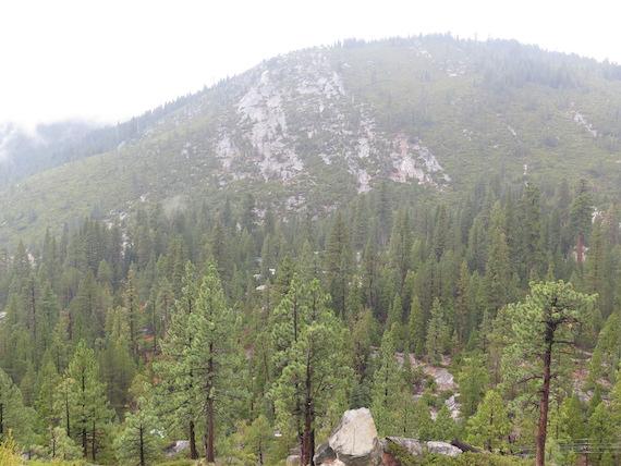 Road Trip to Lake Tahoe (18)