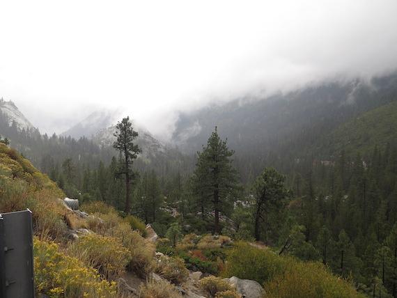Road Trip to Lake Tahoe (19)