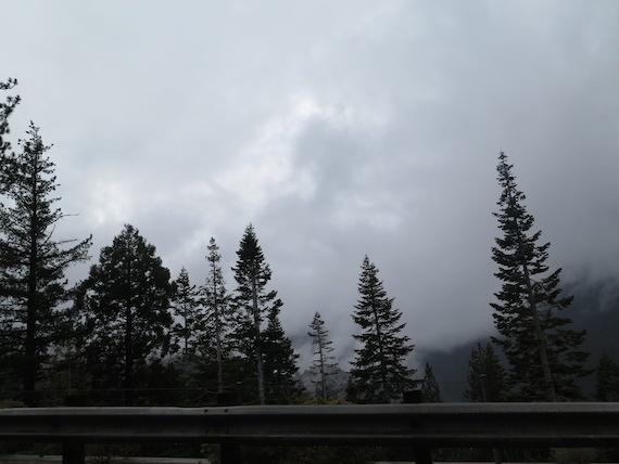 Road Trip to Lake Tahoe (2)