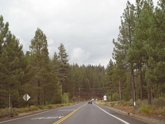 Road Trip to Lake Tahoe (4)
