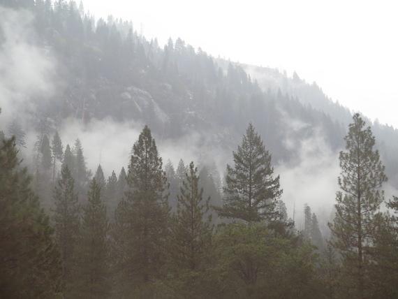 Road Trip to Lake Tahoe (7)