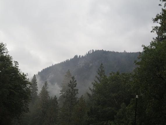 Road Trip to Lake Tahoe (8)