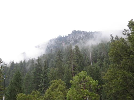 Road Trip to Lake Tahoe (9)