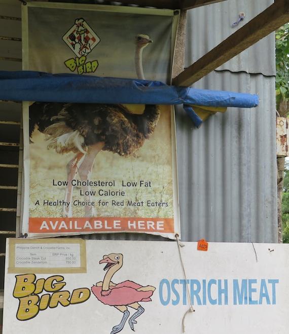 big bird ostrich meat opol