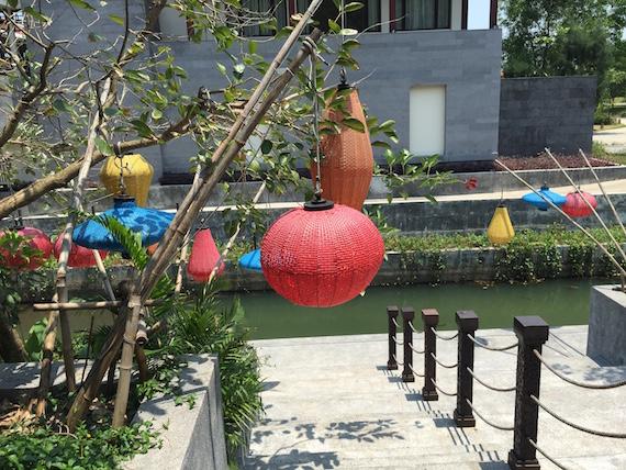 Banyan Tree (5)