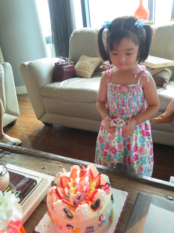 Stellie's Birthday  (5)