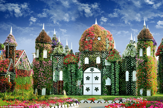World's Largest flower garden (12)