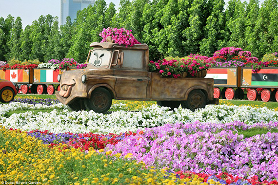 World's Largest flower garden (6)