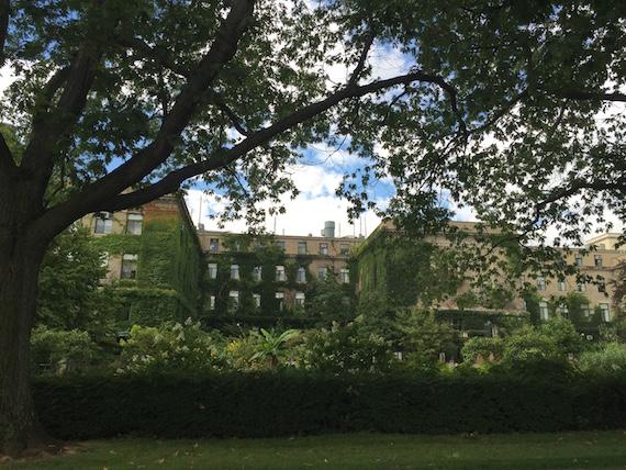 Cornell University (21)