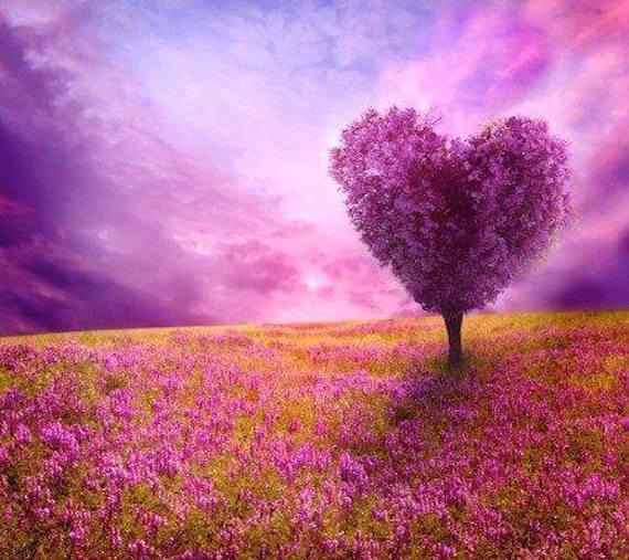 thelma heart facebook fan heart2heart