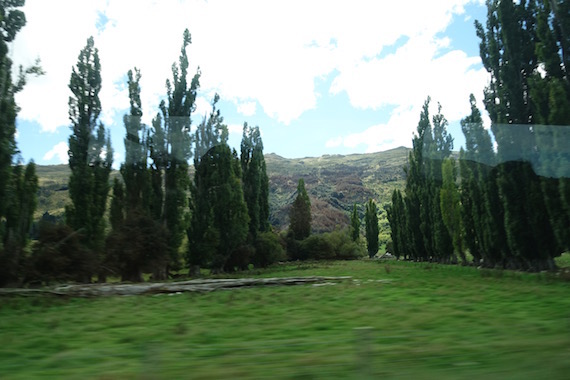 Arrowtown (15)