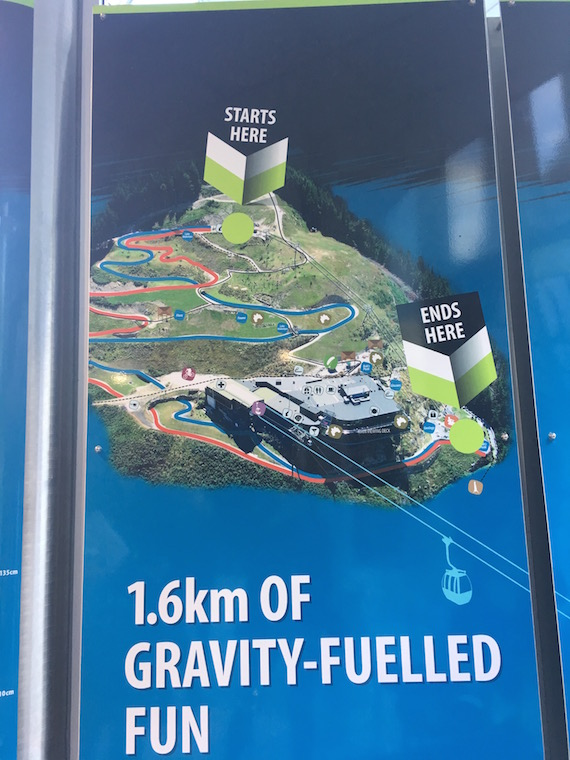 Queenstown Gondola and Luge (8)