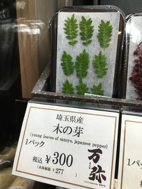 Tokyo Sightings May 2016 (30)