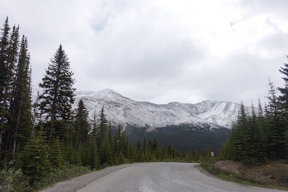 Bow Lake and Bow Summit at Banff (1)