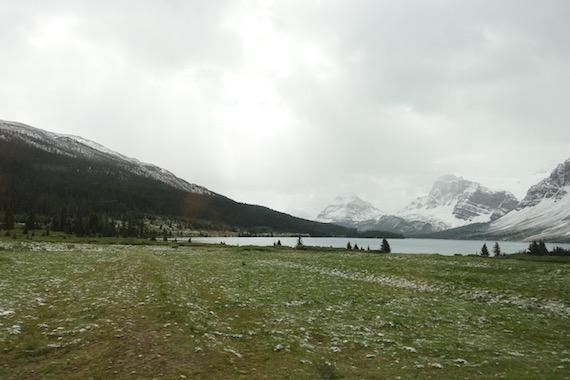 Bow Lake and Bow Summit at Banff (16)