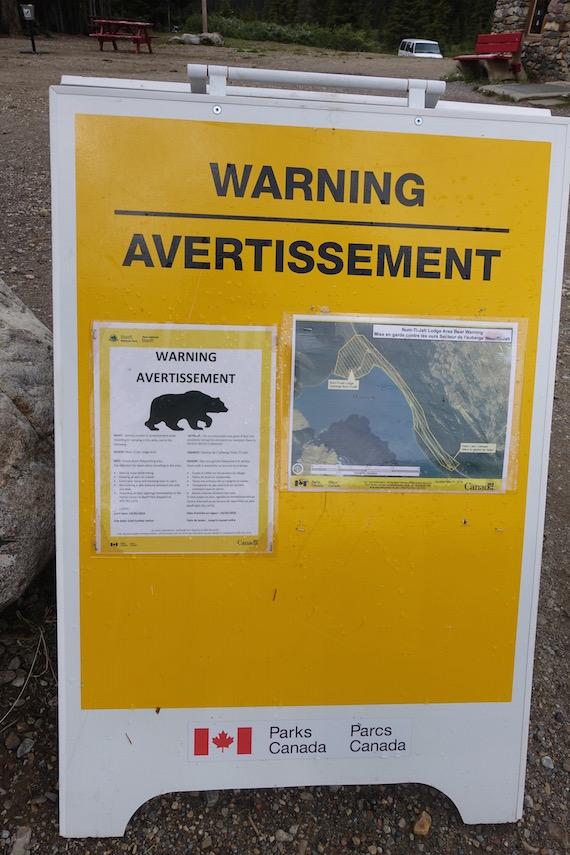 Bow Lake and Bow Summit at Banff (19)
