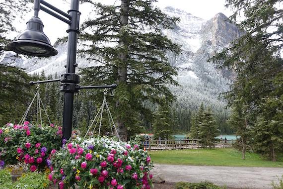 Lake Louise Banff (9)