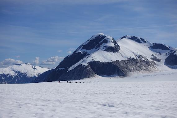 Dog Sledding in Junaeu Alaska (17)