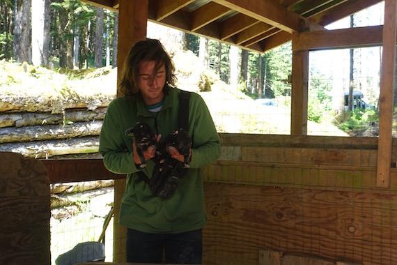Musher's Camp Junaeu Alaska (4)