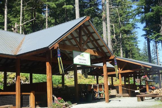Musher's Camp Junaeu Alaska (6)
