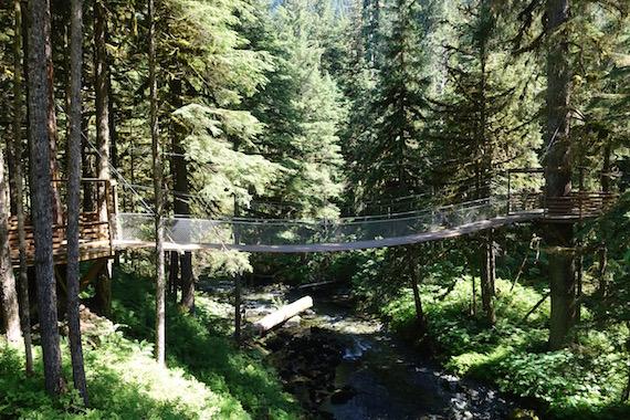 Musher's Camp Junaeu Alaska (8)