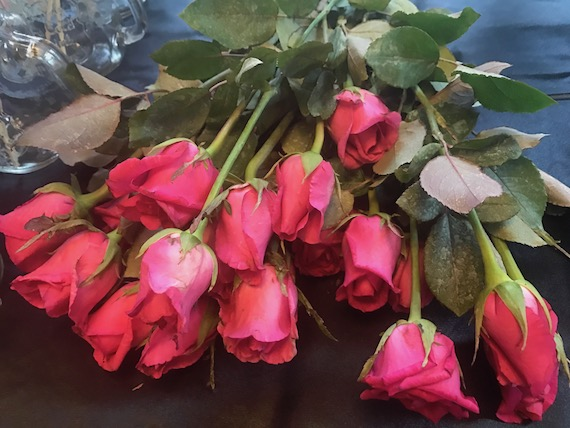 18ettina Blooms (23)
