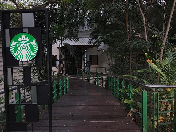 Starbucks Nichada (13)