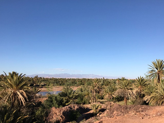 Road trip from the Sahra Desert to Marrakech (29)