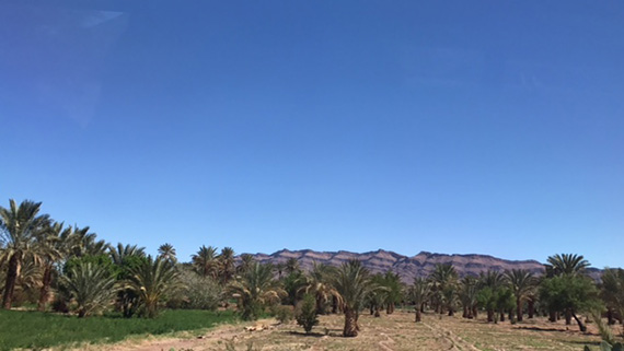 Road trip from the Sahra Desert to Marrakech (7)