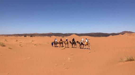Sahara Desert Caravan (12)