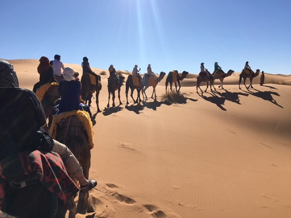 Sahara Desert Caravan (16)