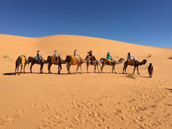 Sahara Desert Caravan (17)