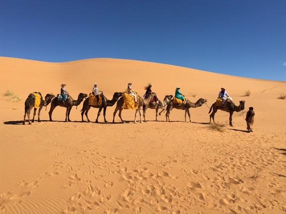 Sahara Desert Caravan (18)