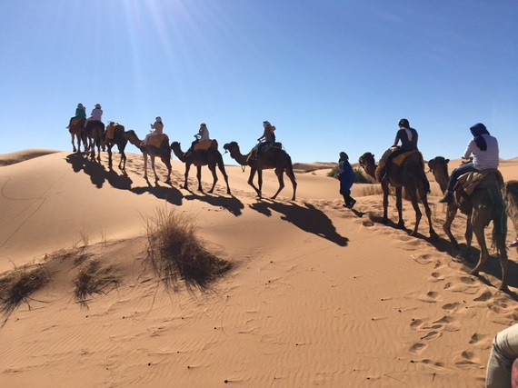Sahara Desert Caravan (19)