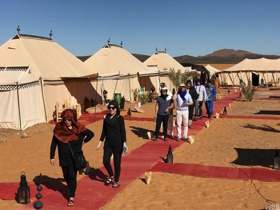 Sahara Desert Caravan (6)