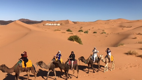 Sahara Desert Caravan (7)