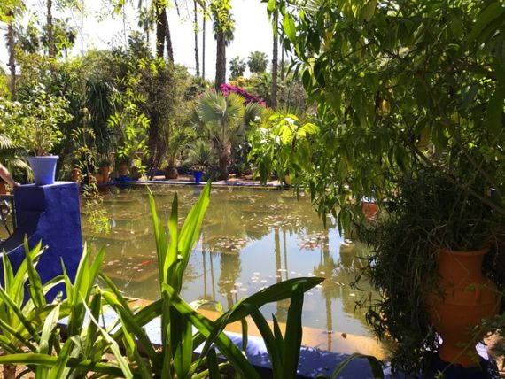 Jardin Majorelle19