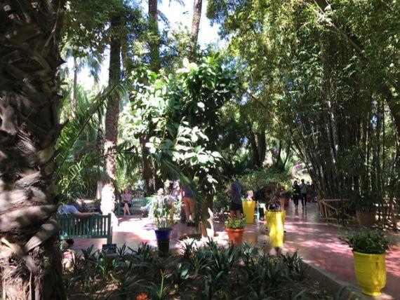 Jardin Majorelle4