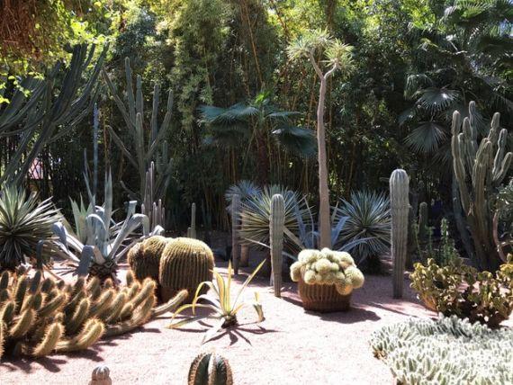 Jardin Majorelle47