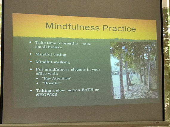 A Talk on Mindfulness (22)